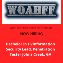 Bachelor in IT/Information Security Lead, PT Johns Creek, GA